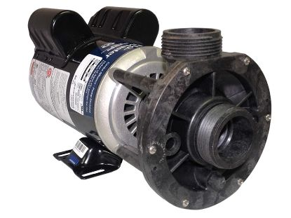 PUMP: 1.0HP 115V 2-SPEED 48 FRAME FMCP 02610000-1010